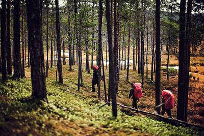ukk-visit-finland